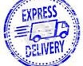 Only +10  express shipping // Express Delivery