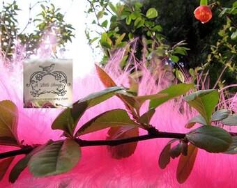 Medium Hot Pink Marabou Boa Feathers
