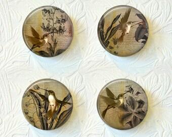 Magnet Set Hummingbirds Buy 3 Get 1 Free 017M