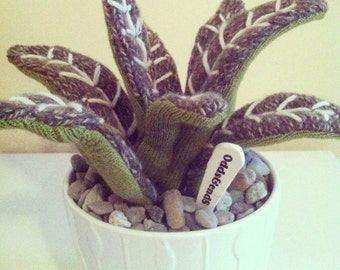 Knitted Cactus - Number 3