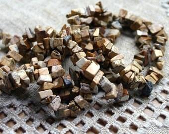 Picture Jasper 36 Inch Strand Chips Gemstone Beads 12x5mm