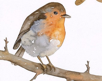 ROBIN Bird - Art Print, Limited Edition - Watercolor Painting by Lorisworld (5x7)