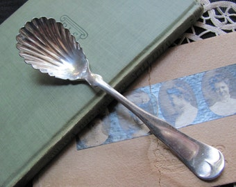 Antique Silver Plate Sugar Berry Nut Shell Spoon - Tipped 1847 Pattern