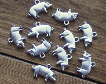 10 Pig Charms