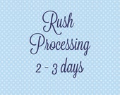 Rush Processing (2-3 days)