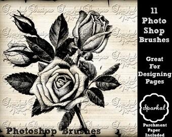 Photoshop Brushes Butterfly Flourish Vintage Wedding Clipart Digital Scrapbooking Digital Scrapbooking