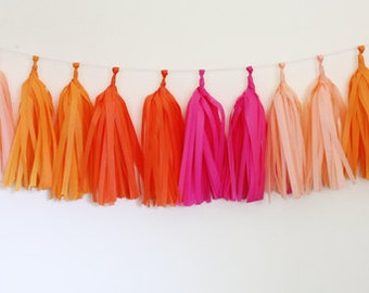 Pink and Peach Tissue Tassel Garland Kit - Bright - The Flair Exchange