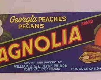 1940s Georgia Fort Valley Peaches Pecans Magnolia Rose Lot Crate Labels NOS