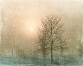 Photo of Sun behind Fog and Trees - Fine Art Photo Entitled Hope - 11 x 14