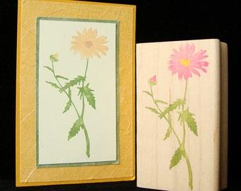 wild flower stem