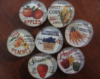 FARM FRESH PRODUCE Magnets Strong Refrigerator Magnets Set of 7