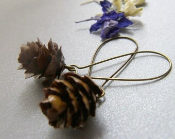 Pine Cone Earrings, Real Miniature, Woodland Earrings, Dangle Earrings, Bronze Earwires