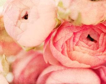 Pink Ranunculus Photo - Fine Art Photography, girls room, shabby, romantic, feminine, pink flower print, nursery, wall art, decor, spring
