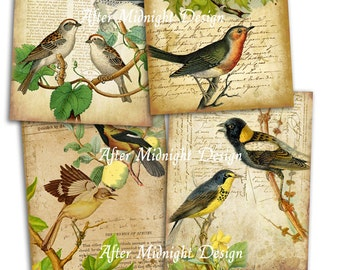 INSTANT DOWNLOAD Digital Papers No A01 Spring birds, digital papers 8,5x11 inch, decoupage, scrapbooking , tags, cards