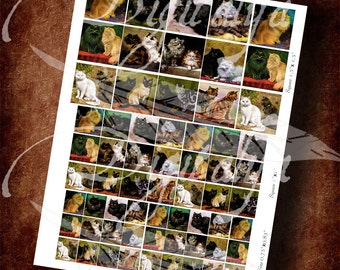 Vintage Tabby, Persian and Siamese Cats - Digital Collage Sheet - Combo Squares with 1.5 inch, 1 inch and scrabble size - Buy 3 Get 1 Free