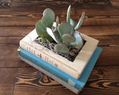 Stacked Vintage Book Planter for Succulents or Flowers