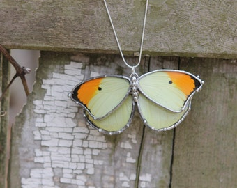 Real Butterfly Necklace - Orange and Yellow Butterfly - Sterling Silver