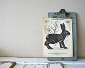 Vintage 1960s Jack Rabbit Paper Shooting Target