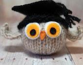 Graduation Owl - Knit Owl with Graduation Cap, Graduation Ornament - Toy Owl - Natural Fibers