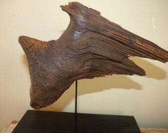 Wooden Sculpture made by Nature , Driftwood b2