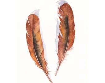 Feathers Brown F090 Feather painting- print of watercolor painting A4 print