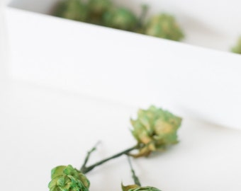 DIY Hops boutonnieres WIRED HOPS for crafting and easy manipulation
