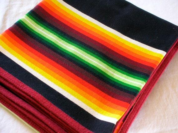Pendleton Beaver State Wool Blanket Western Banded Striped