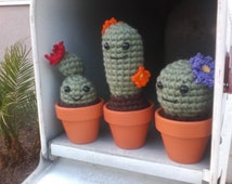 Cute Crochet Cactus