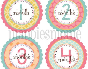Monthly Baby Stickers Baby Girl Month Stickers Milestone Stickers Monthly Photo Stickers Bodysuit Stickers (Charlotte)