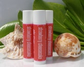 STRAWBERRY SHORTCAKE - Lip balm