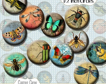 Vintage Insects 12mm 1/2 Inch Circles Rounds Digital Collage Sheet -  INSTANT Download - Bottle cap Pendant Jewelry - Printable Download