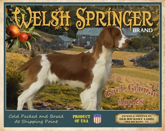 Welsh Springer Spaniel Small Wooden Crate