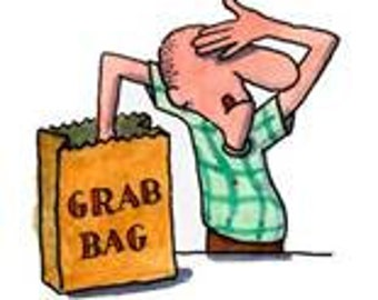 GRAB BAG -  Of 8 Snack Bags and 8 Sandwich Bags