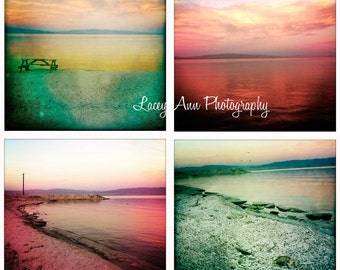 Salton Sea Photo Set of four sunset fish home decor