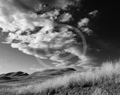 DIGITAL DOWNLOAD  - Grasslands Photography Black and White Summer Clouds Wind Landscape Cattle Countryside Grey