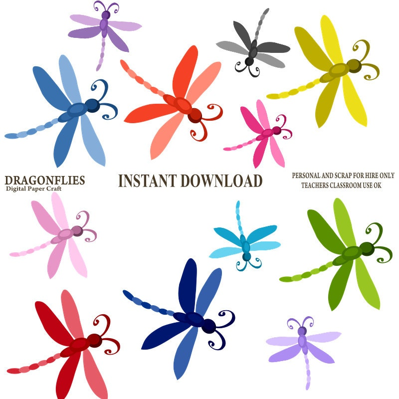 Dragonfly Clipart Dragonflies Clipart Instant Download