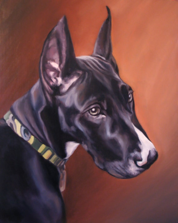 Custom Pet Portrait - Great Dane - Oil Painting -  Dog portrait
