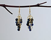 Blue Imperial Jasper Beaded Chainmaille Earrings