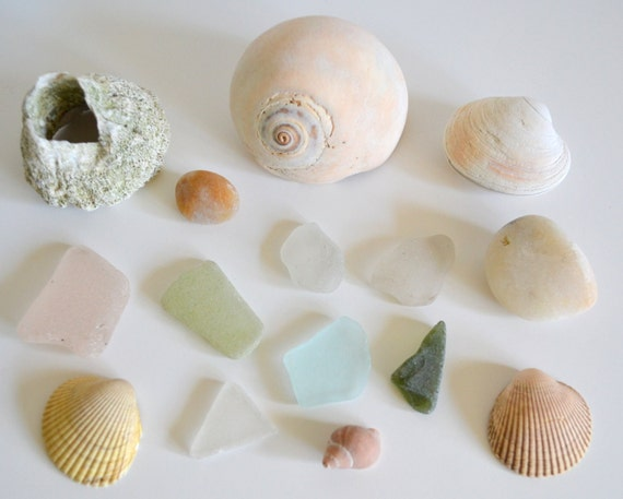 Sea Beach Decor Instant Collection Glass by ThePaisleyWhale
