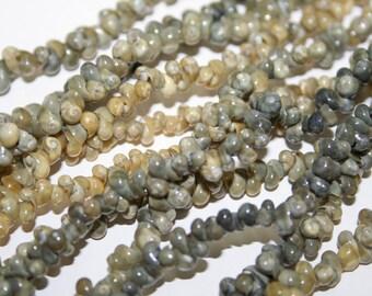 Mother of Pearls, 8m, 100pcs. Art.No.707-43