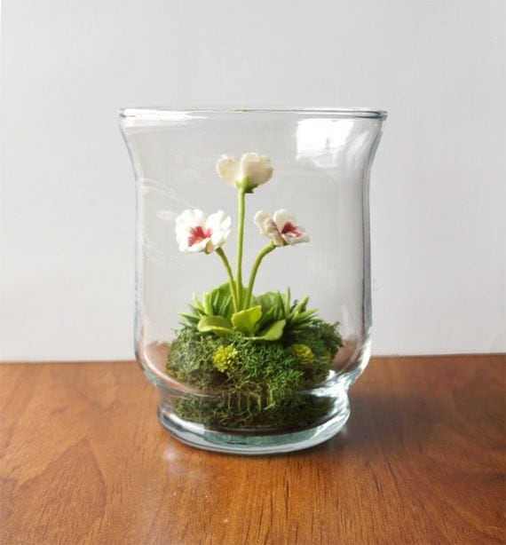 Tiny White & Red Pansy Woodland Terrarium in Repurposed Glass