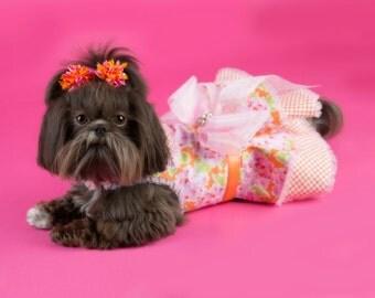 Creamy Orange & Pink Dog Party Dress