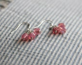 LOTUS ROSE earrings • silver earrings with little translucent pink beads