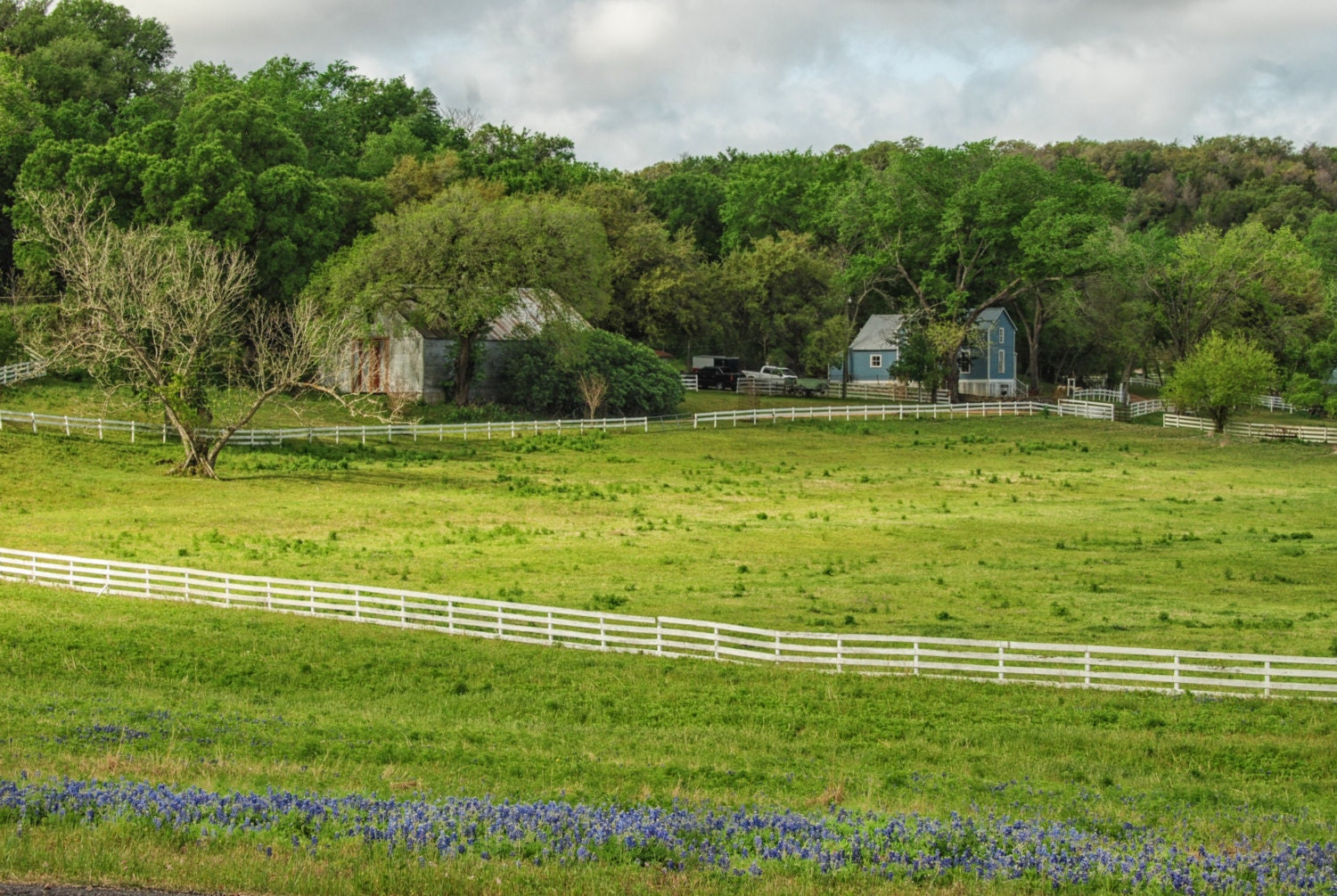 Ranch Landscape Photography Texas Hill Country Farm