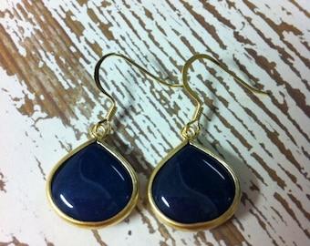 Indigo Synthetic Stone Earrings