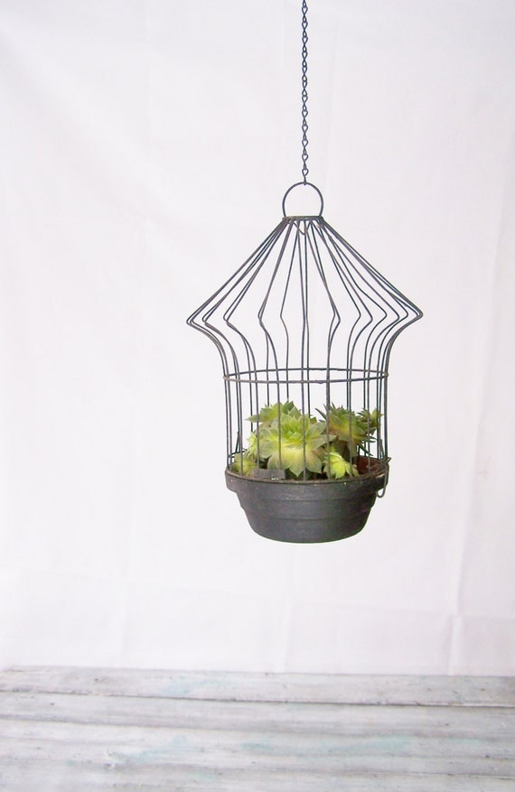 Hanging Planter Small Black Metal Clay Combo Planter