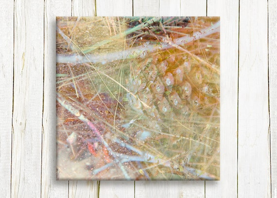 Nature art - Canvas art print - ready to hang - housewarming gift