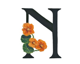 N is for Nasturtium, Floral Alphabet 5x7 or 8x10 print