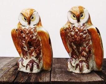 Vintage Porcelain Brown Owl Set