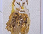 Brown owl Original Watercolour painting